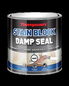 THOMPSONS INTERIOR DAMP SEAL 250ML